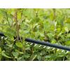 Bosch UniversalHedgeCut 18-50 akkus sövényvágó